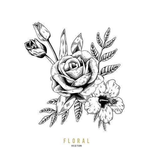 Rose flora prydnad teckning vektor