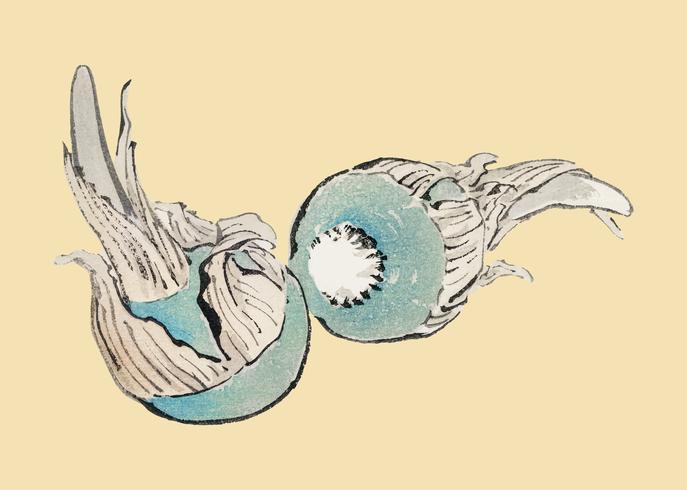 Flecha de Três Celeiros de K? No Bairei (1844-1895). Digitalmente aprimorado de nossa própria edição original de 1913 do Bairei Gakan.