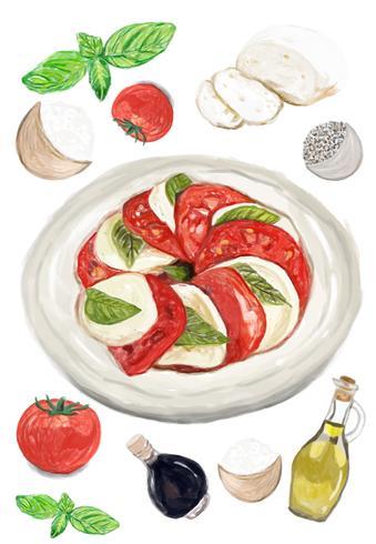 Hand drawn caprese salad watercolor style