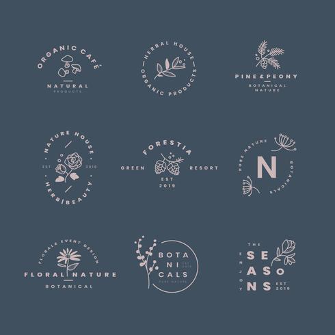 Conjunto de vectores de diseño de logotipo botánico