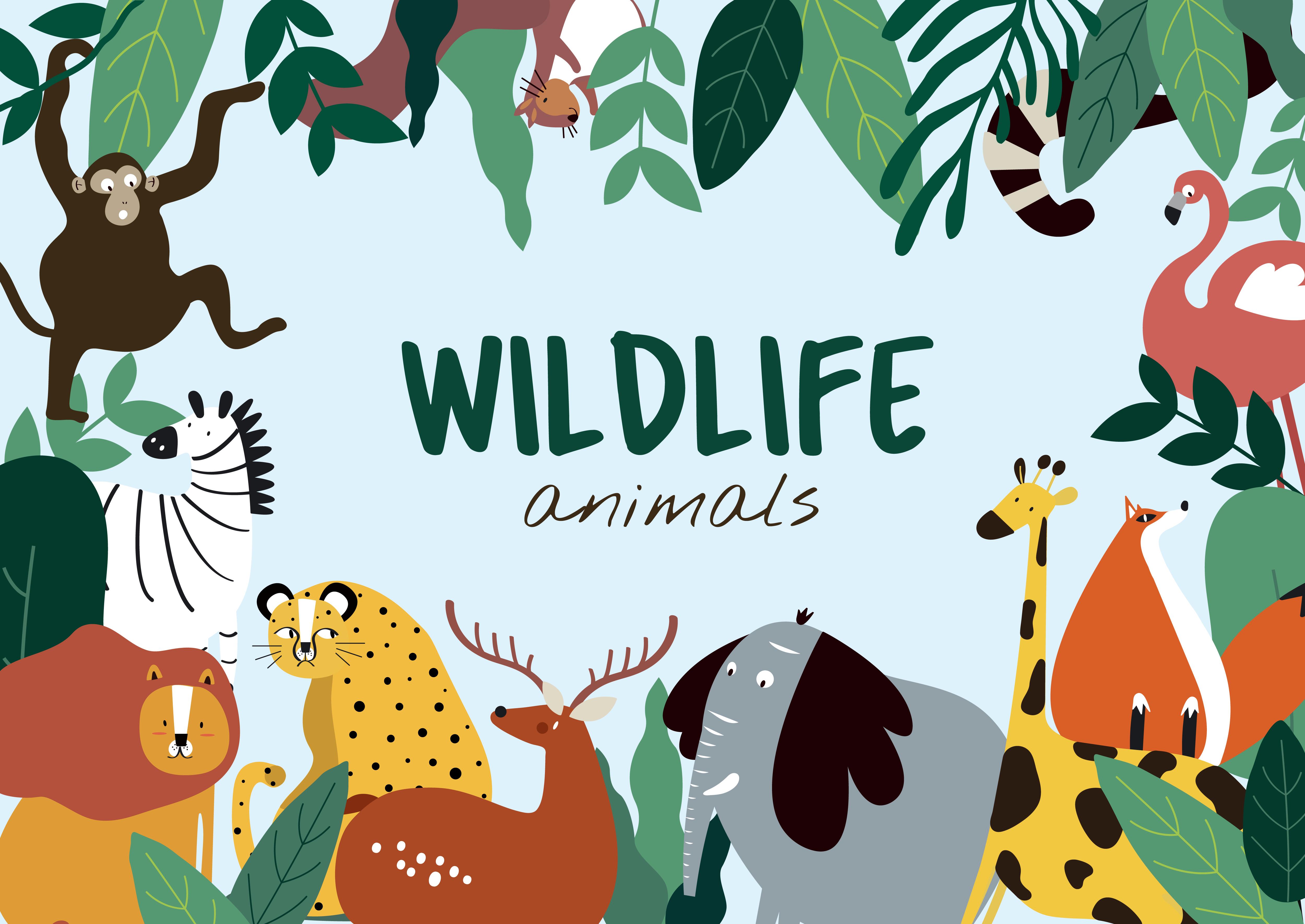 Wildlife animals cartoon style animals template vector