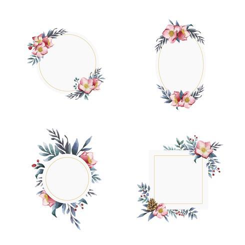 Set di cornici fiore di Elleboro dipinte da vettori ad acquerello