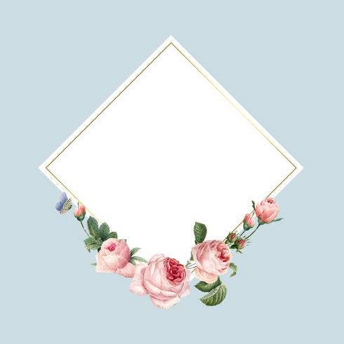 Blank square pink roses frame on blue background vector