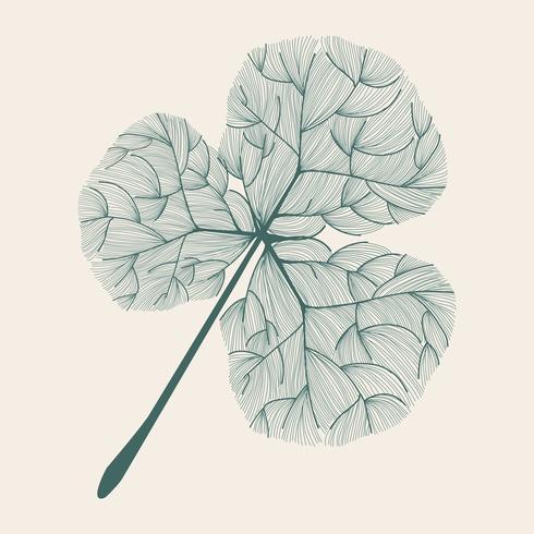 Illustration of tree leaf
