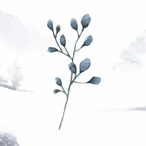 Folhas de eucalipto de dólar prata pintadas em aquarela vector
