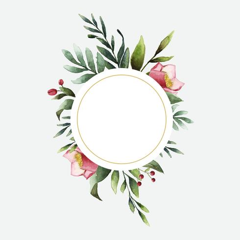 Hellebore flower frame painted by watercolor vector