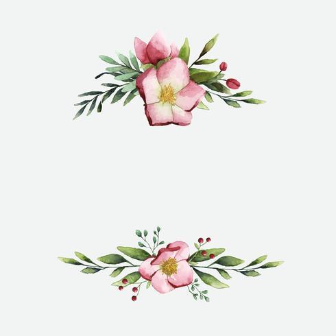 Flores de heléboro, pintadas por aquarela vector