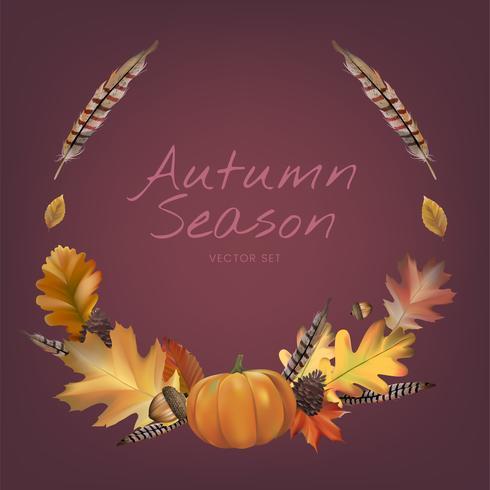 Raccolta del vettore delle foglie di autunno