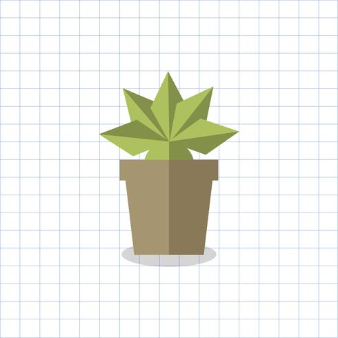 Plante épineuse dans un vecteur de pot