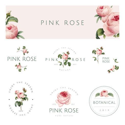 Insieme di vettore dell'emblema della rosa rosa disegnato a mano