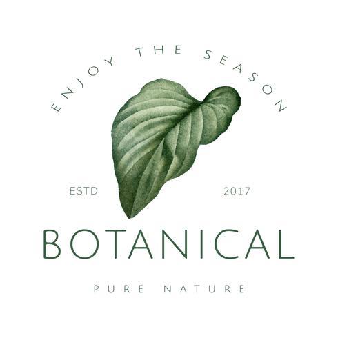 Création de logo végétal