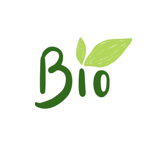 The word bio typography vector