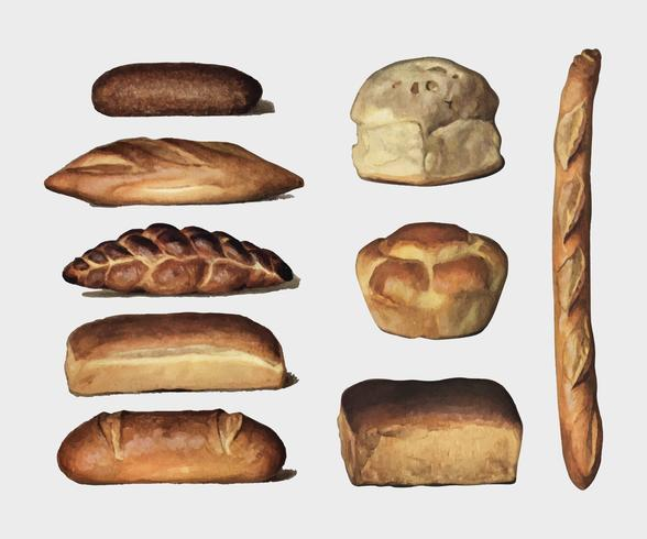 , a vintage collection of various types of baked bread loaves. Digitally enhanced by rawpixel.