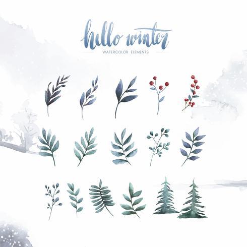 Olá inverno plantas e flores pintadas por aquarela vector