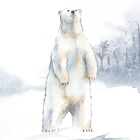Urso polar desenhado à mão no vetor de estilo aquarela de neve