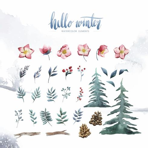 Bonjour plantes et fleurs d'hiver peints par vecteur aquarelle