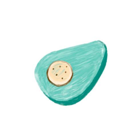 Illustration of hand drawn avocado icon isolated on white background