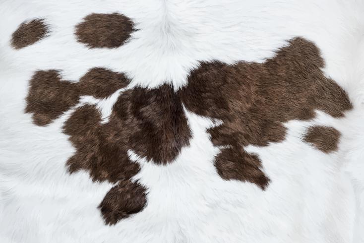 Pellame bianco della mucca con fondo marrone delle toppe