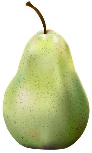 Abbildung des Apfels lokalisiert auf weißem Hintergrund