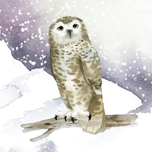 Búho nival en vector de estilo acuarela de invierno