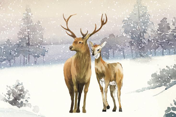 Handgetekende paar herten in een winterlandschap aquarel stijl vector