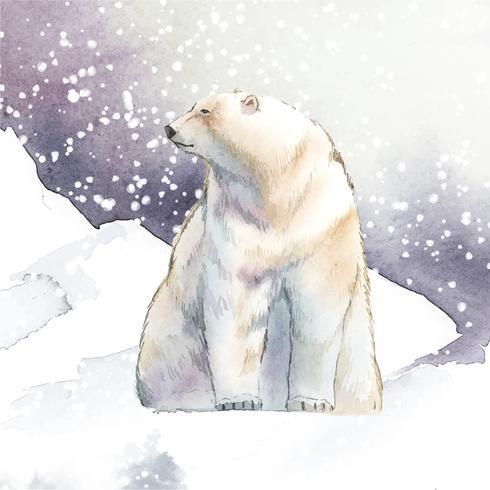Orso polare disegnato a mano nel vettore di stile dell'acquerello neve