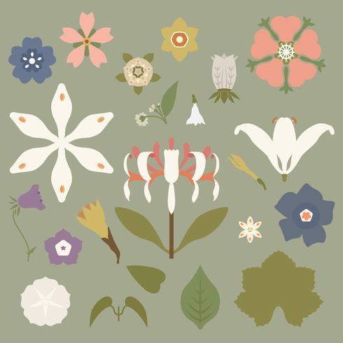 Vintage Blumendrucke inspiriert von The Grammar of Ornament