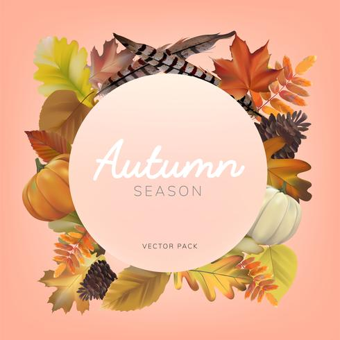 Verzameling van herfstbladeren vector