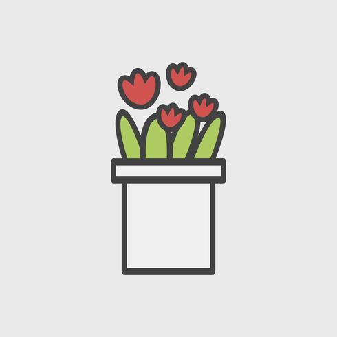 Abbildung von Zimmerpflanzen