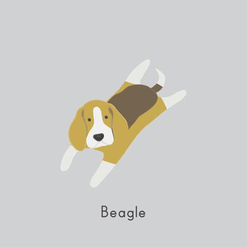 Illustrazione sveglia di un cane beagle