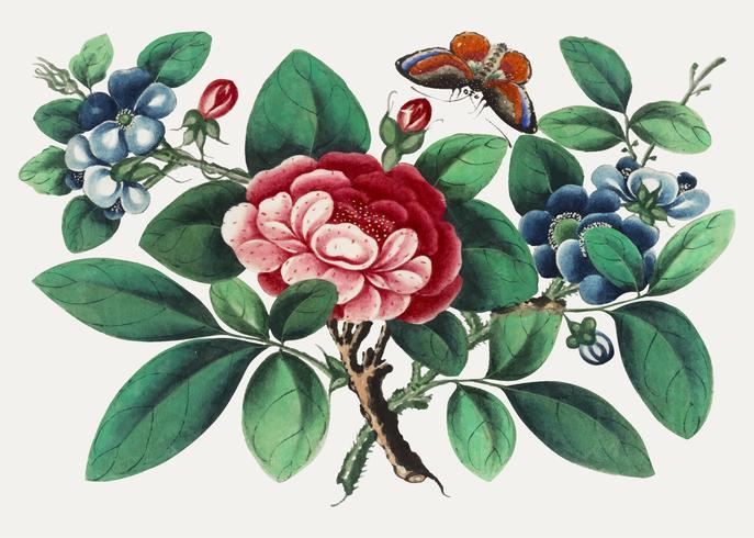 Kinesisk målning med blommor och fjäril.