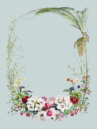 Page de titre de Illustrations de plantes himalayennes (1855) de WH (Walter Hood) Fitch (1817-1892). Augmenté numériquement par rawpixel.