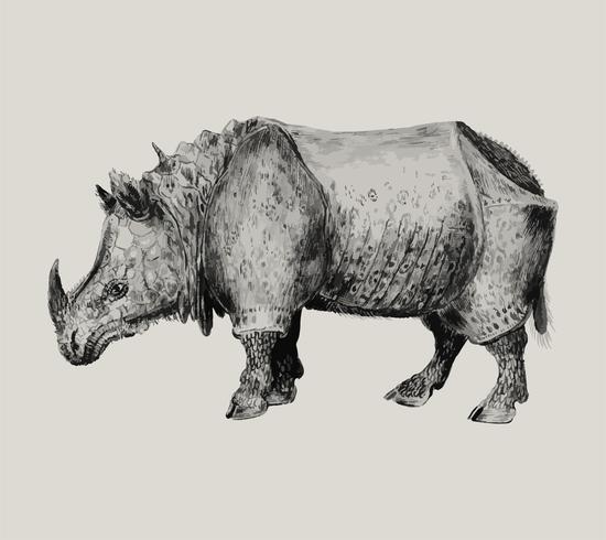 Rhinoceros in vintage style