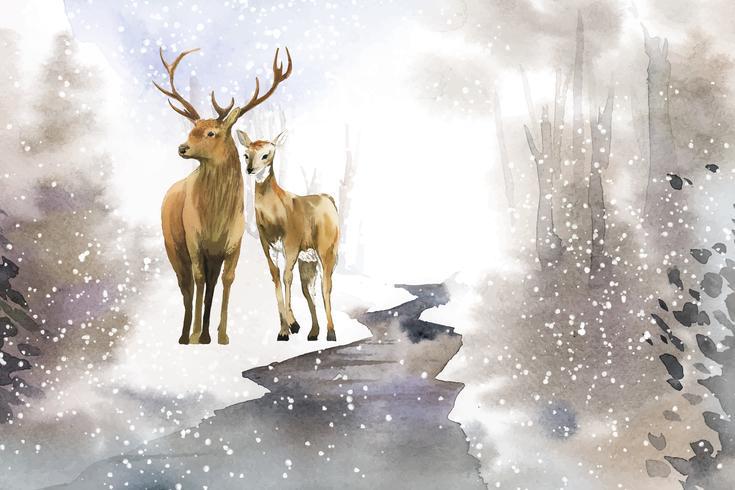 Von Hand gezeichnete Paare von Rotwild in einem Winterlandschaftsaquarellartvektor