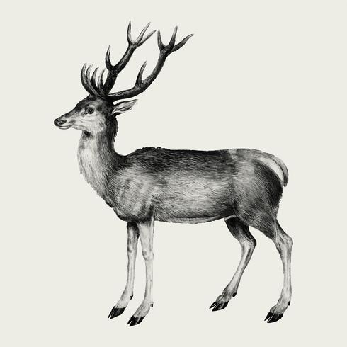 Hjort i vintage stil