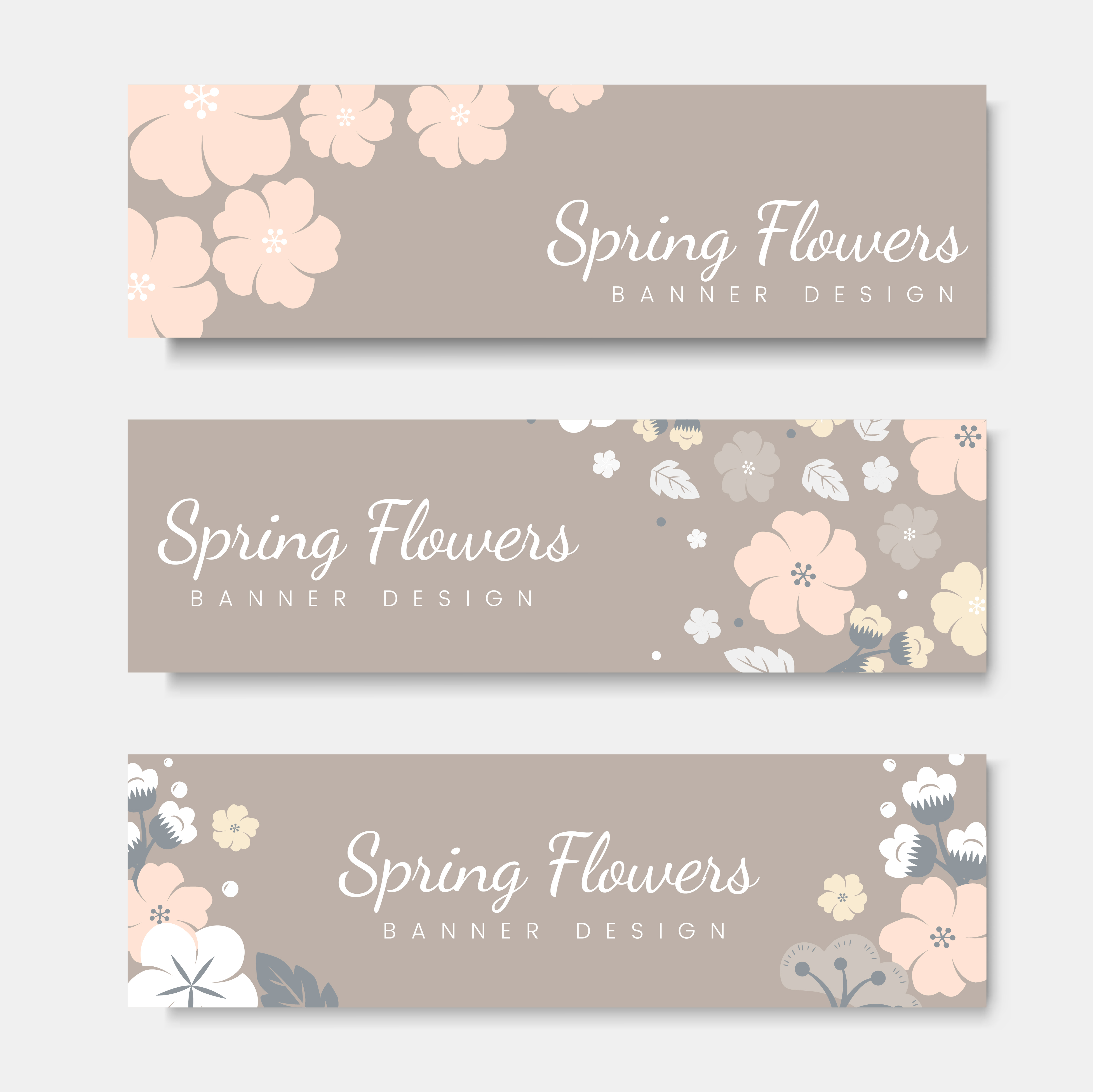 colorful flower card template set  download free vectors