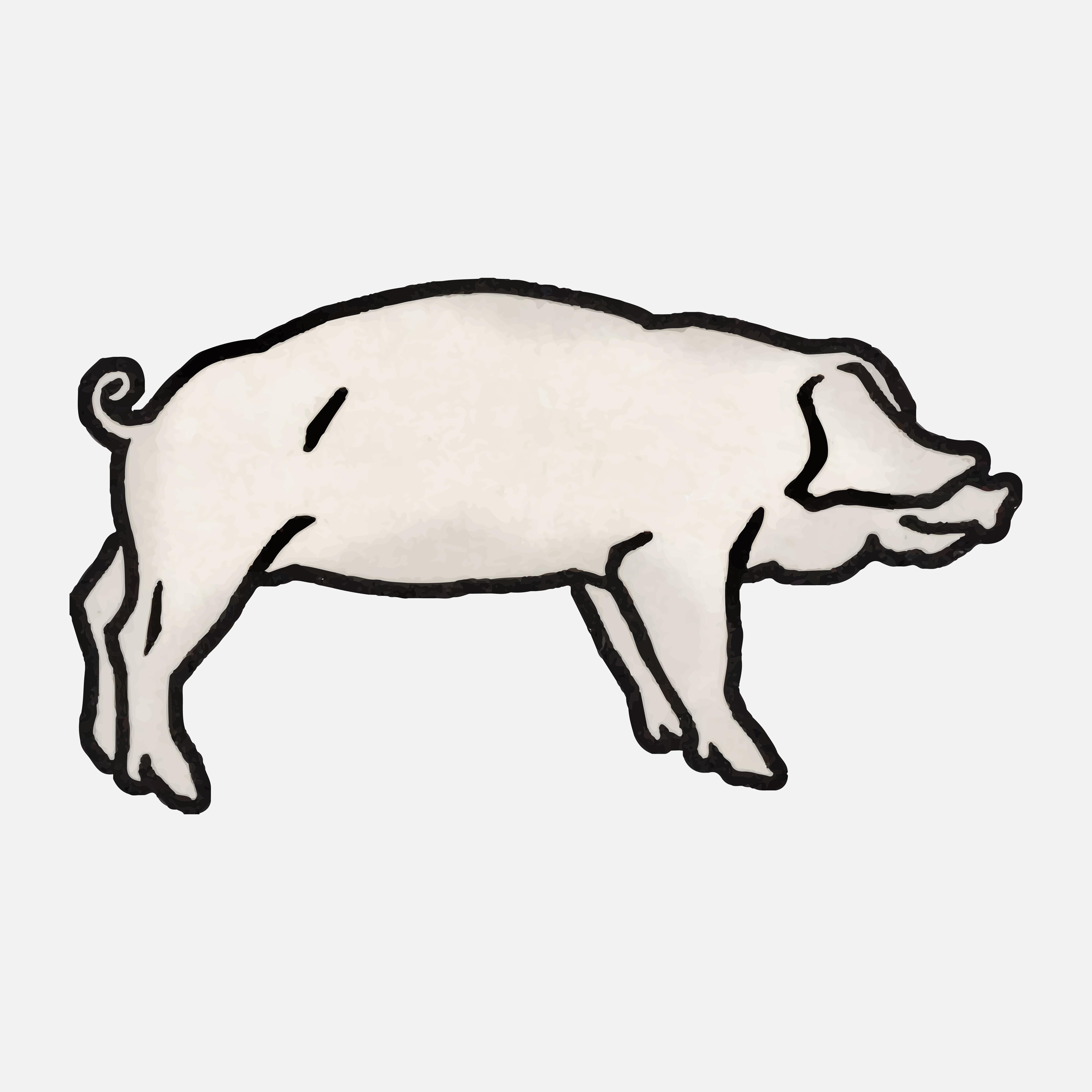 豬卡通圖 免費下載 | 天天瘋後製