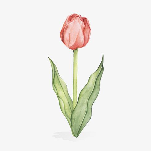 Illustratie van Pasen-festival