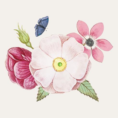 Rosa selvatica in stile vintage