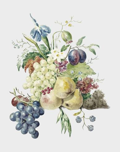 Still life of flowers and fruits by Jean Bernard (1775-1883). Original from the Rijks Museum. Digitally enhanced by rawpixel.