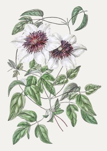 Fiore in pelle