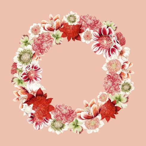 Illustration vintage de fleurs d'anémone en forme de couronne