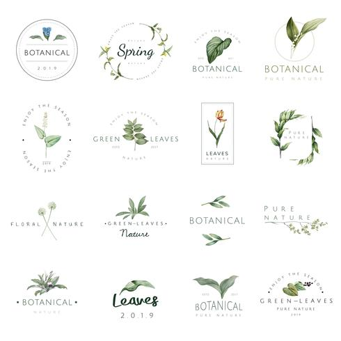 Sats av natur- och växtlogosvektorer