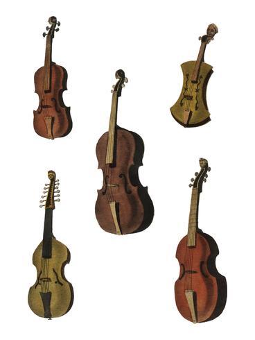 Una collezione di violino antico, viola, violoncello e altro da Encyclopedia Londinensis; o Universal Dictionary of Arts, Sciences and Literature (1810). Miglioramento digitale di rawpixel.