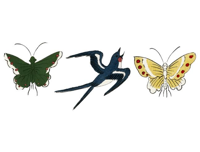 Weinlese-Illustration des japanischen Vogels und der Basisrecheneinheiten