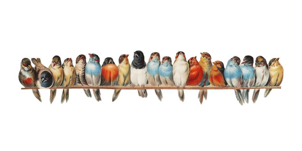 Um poleiro dos pássaros (1880) por Hector Giacomelli (1822-1904). Digitalmente aprimorada pelo rawpixel.