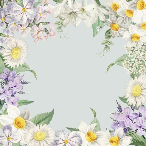 Flor de verano enmarcada tarjeta