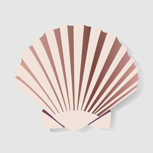 Seashell Vectot Illstration Graphic Design