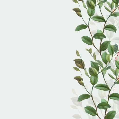 Grön botanisk ram