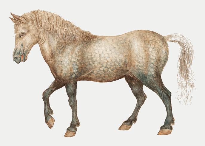 Pferd im Vintage-Stil